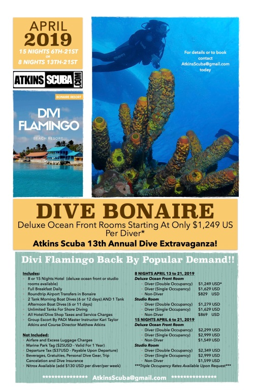 Bonaire 2019 Poster v3